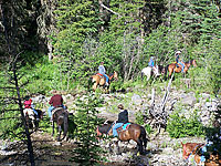Cabins near Yellowstone - activities