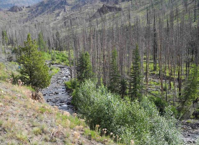 river-from-hillside