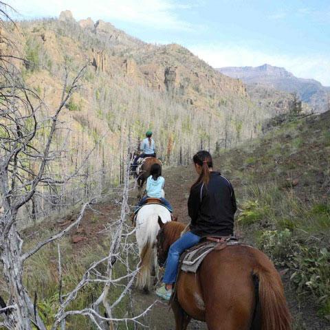three-riders-on-hillside